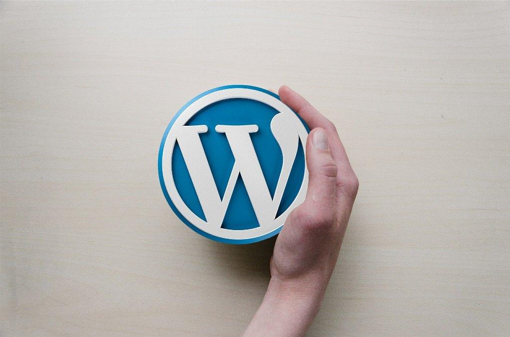 WordPress website development services in Indore